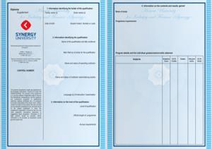 Диплом Управление рекламным агентством | Университет СИНЕРГИЯ