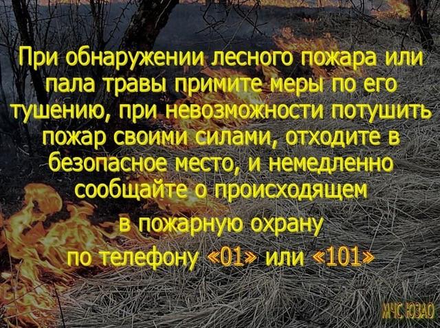 о лесных пожарах